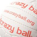 Crazy Catch Crazygame Ball